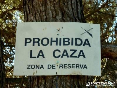 Alto Mijares -Castellón; Puente Reyes; amigos en madrid alpujarras granadinas bosque de oma